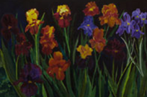 Irises in Twilight